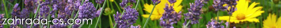 Zahrada-cs.com