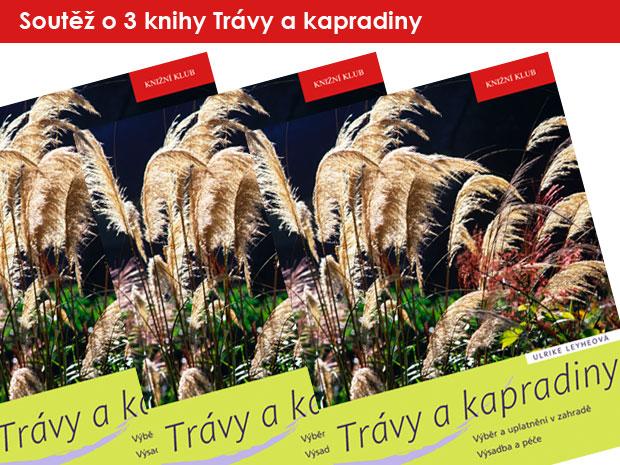 1026-soutez-travy-a-kapradiny.jpg