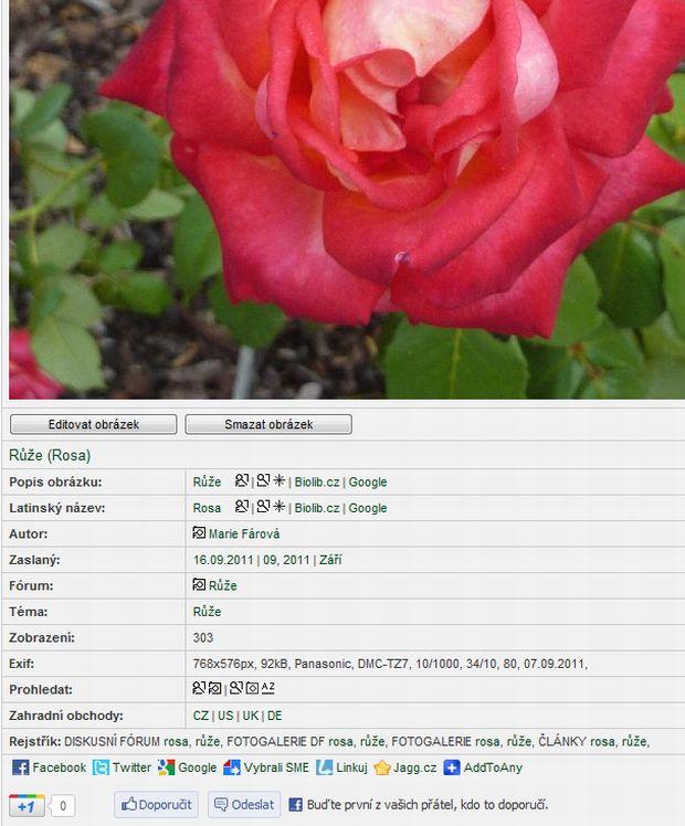 1451-editace-obrazku.jpg