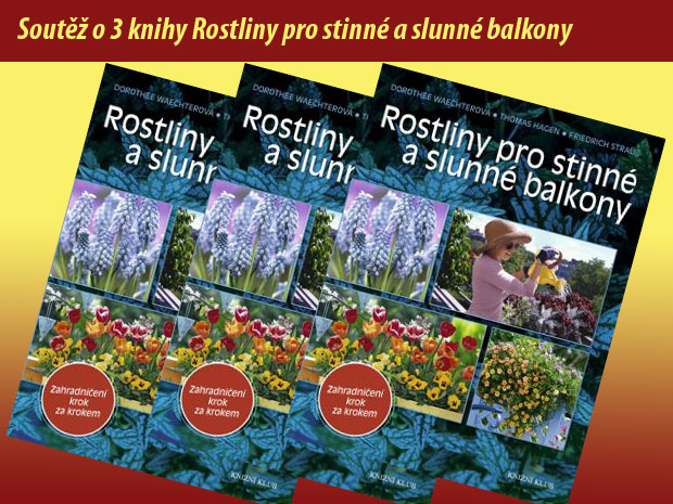 http://www.zahrada-cs.com/images_forum/2199-rostliny-pro-stinne-a-slunne-balkony.jpg