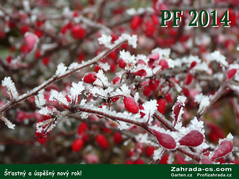 22520-pf2014.jpg