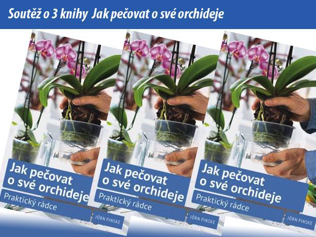 3113-soutez-jak-pecovat-o-sve-orchideje.jpg