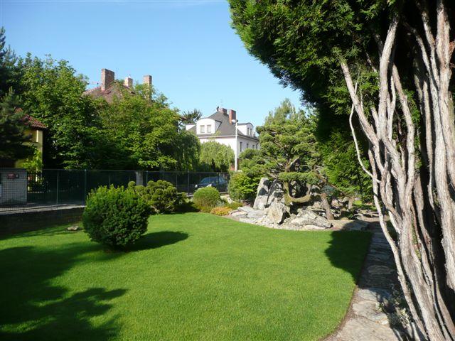 562-bonsaje-v-zahrade-1.jpg