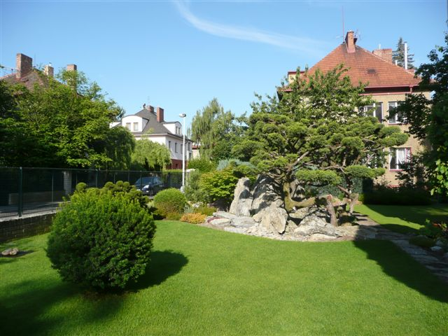 562-bonsaje-v-zahrade-2.jpg