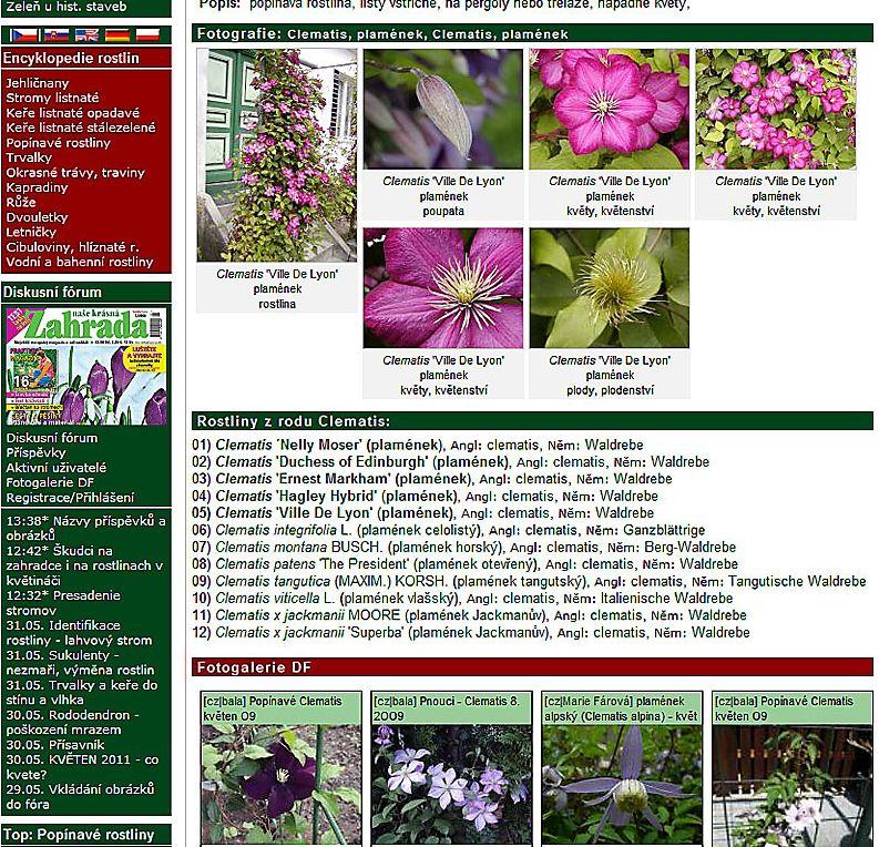 6176-encyklopedie.jpg