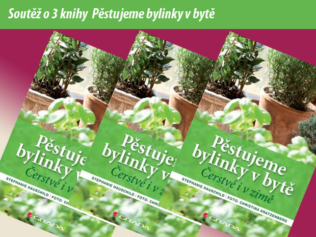 http://www.zahrada-cs.com/images_forum/6940-soutez-pestujeme-bylinky-v-byte.jpg