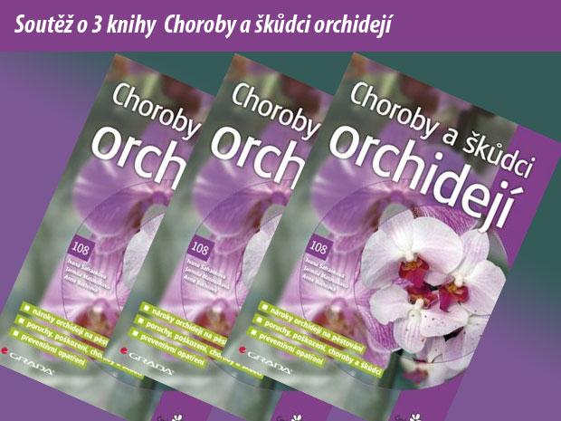 7713-choroby-a-skudci-orchideji.jpg