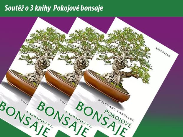 http://www.zahrada-cs.com/images_forum/9079-soutez-pokojove-bonsaje.jpg