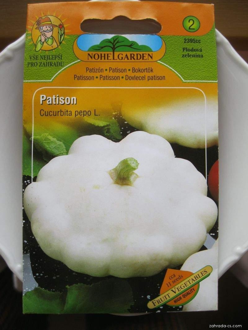 Tykev obecná - patison (Cucurbita pepo)