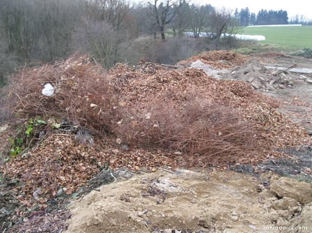 Zahradní odpad - spadané listí