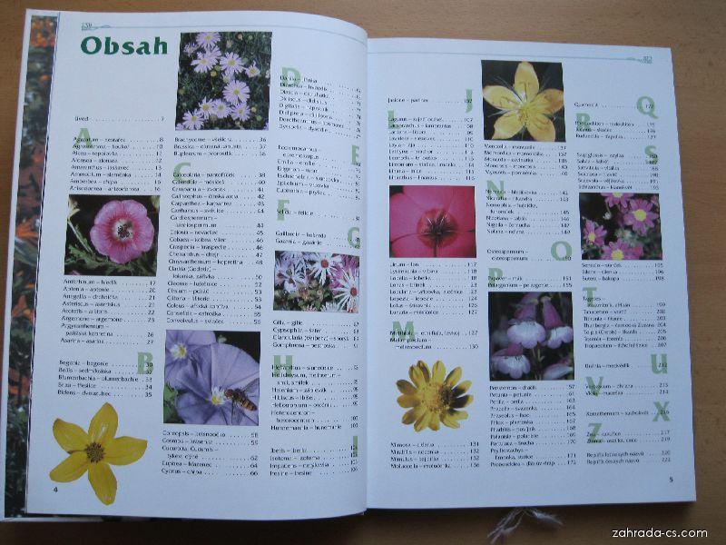 Nejhezčí letničky našich zahrad - ukázka z knihy